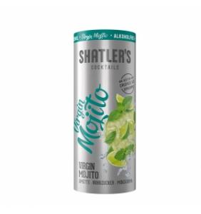 Virgin Mojito - € 2,69